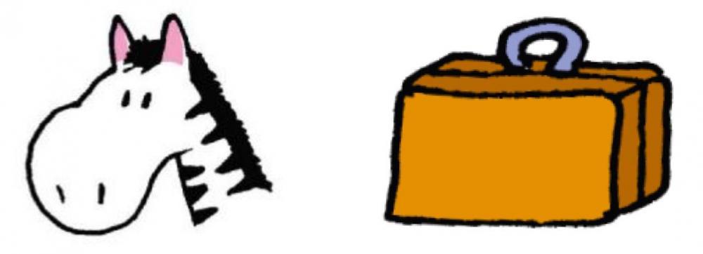 zebre valise.JPG