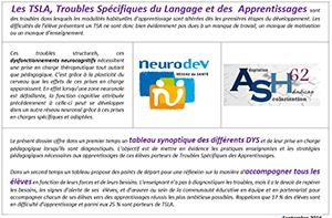 Tableau synoptique des différents DYS et accompagnement des élèves