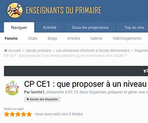 CP CE1 : que proposer à un niveau pendant qu'on commence avec l'autre ?