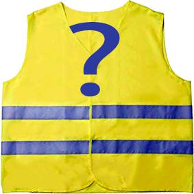 Soutenez-vous la mobilisation des gilets jaunes du 17 novembre ?