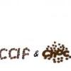 caf&choc