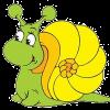 elcaracol